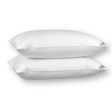 Hi-Loft Down Surround Pillow
