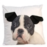 Boston Terrier- Cushion