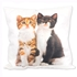 2 Cats Cushion