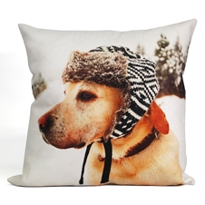 Dog wearing a hat Cushion