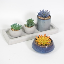 Faux Potted Cactus Plants