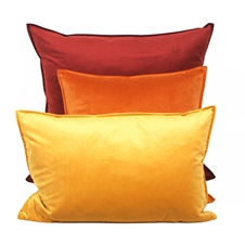 Dutch Velvet Cushions